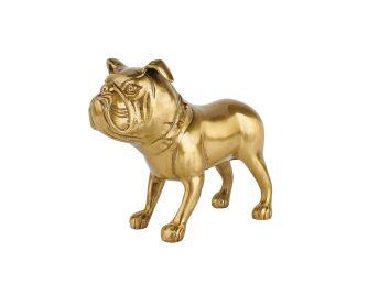 Bulldog Riley
