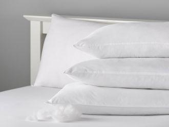 Anti-Allergy Euro Pillow