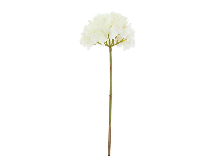 Hydrangea White Stem 53cm