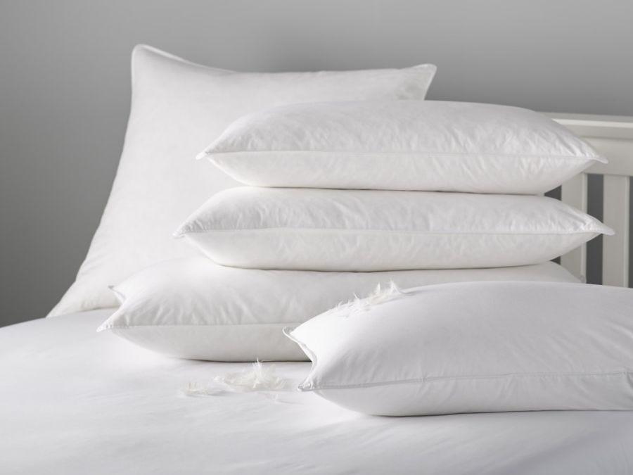 Goose Down 80/20 Pillow, Standard