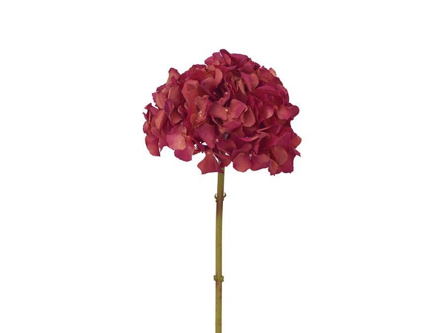 Hydrangea Red Stem 53cm