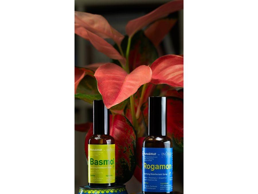Rogamon Purifying Disinfectant Spray 50ml