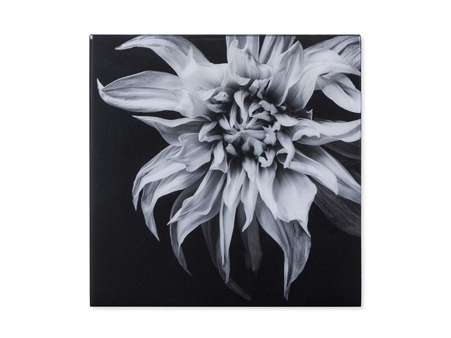 Black & White Flower, Epoxy F Wall Art
