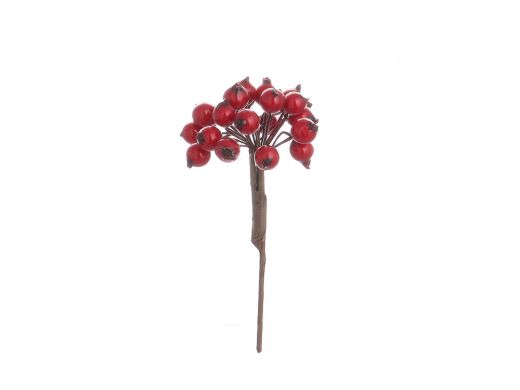 Red Holly Berry Bunch