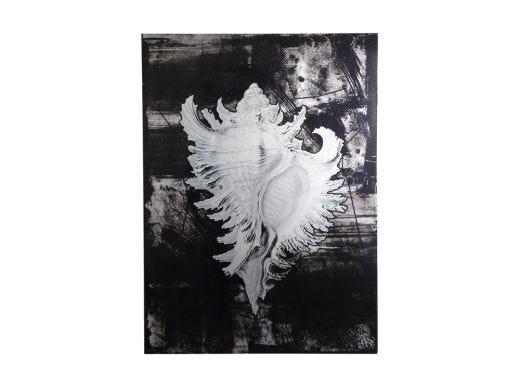 Shell 1 Print