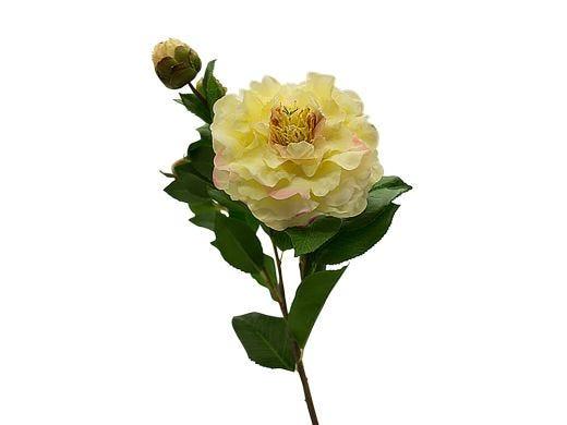 Cream Camellia Stem 67cm