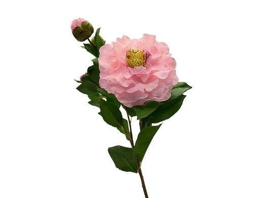 Pink Camellia Stem 67cm