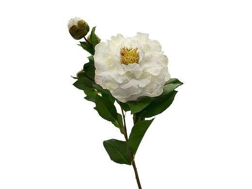 White Camellia Stem 67cm