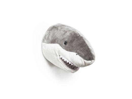 Roomfriend - Shark