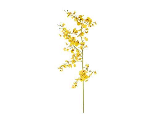 Yellow Dancing Oncidium Single Stem