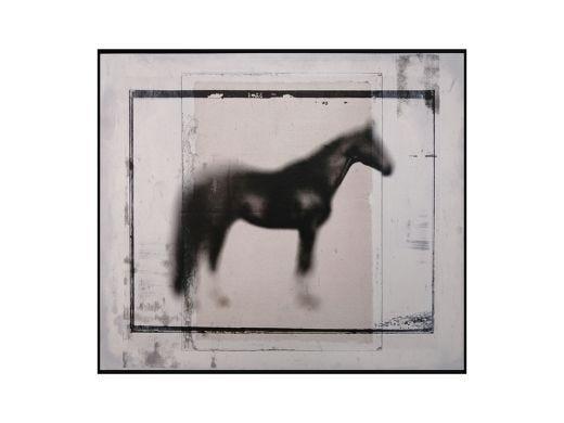Horse Print Artwork
