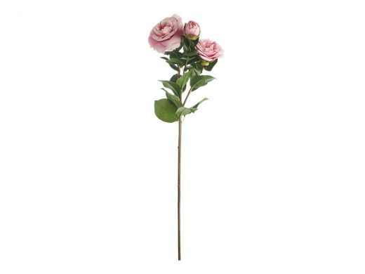 Pink Camellia x3 Blooms Stem