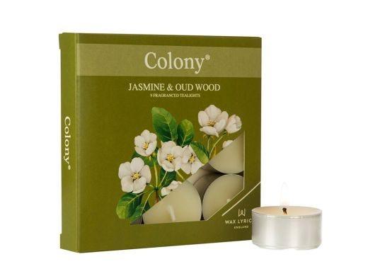 Jasmine Oudwood Tealights 9pcs