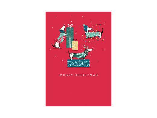 Gifting Dogs Christmas Card
