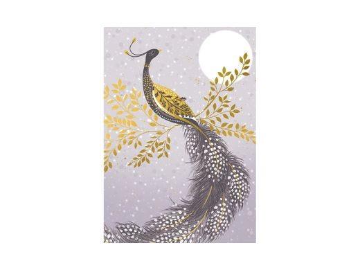 Peacock Christmas Card