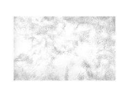 Silky Shaggy White Rug 6x9