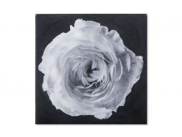 Black & White Flower, Epoxy B Wall Art