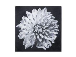 Kelly Hoppen Flower 3