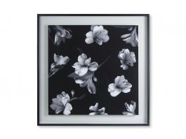 Black & White Flowers Float, Wall Art